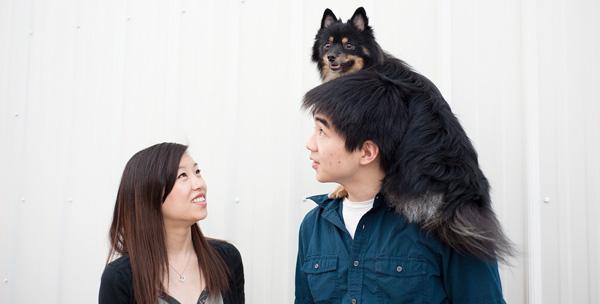 Ann-Arbor-Dog-Photography-Alpha-Blog-Header
