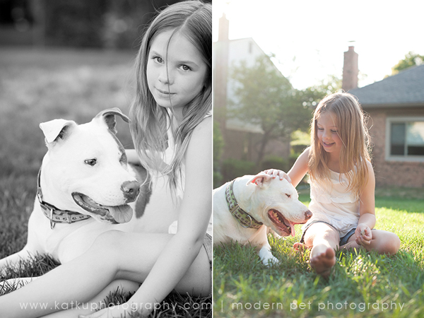 Michigan-Pet-Photography_Mellow-the-Pitbull_-02