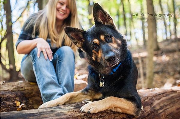 Kat Ku Photography_Bentley_German Shepherd_03