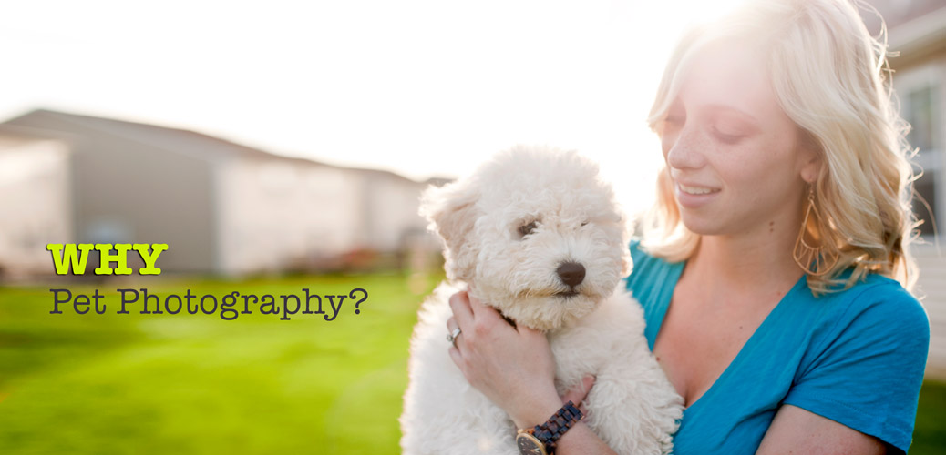 Kat Ku Photography - Why Pet Photography