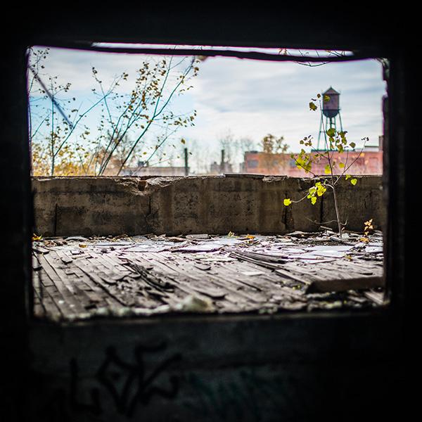 Kat Ku Photography_Detroit Schroeder_06