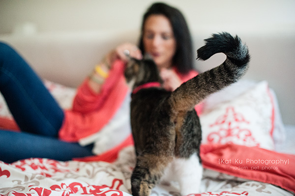 Kat Ku Photography_Lucy and Zappa the Cats_19