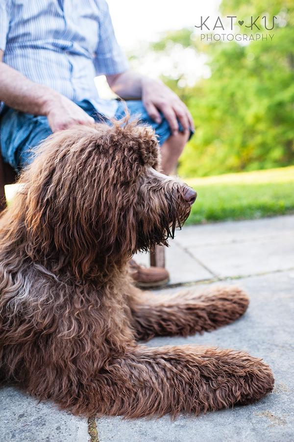 Kat Ku Photography_Ohio Dog_Cosmo_17