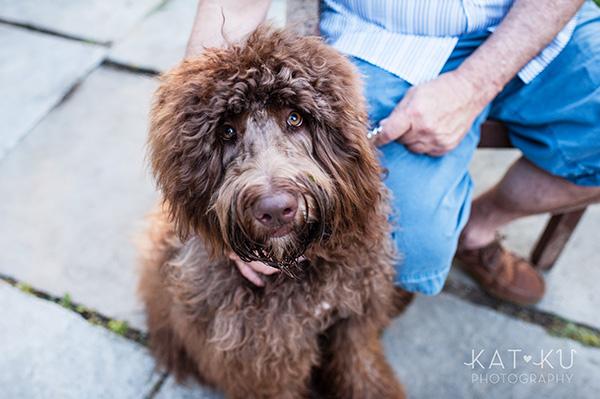 Kat Ku Photography_Ohio Dog_Cosmo_18