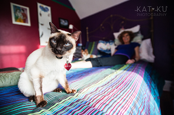 Kat Ku_Ann Arbor Pet Photography_Karly Boy and Poochie_05