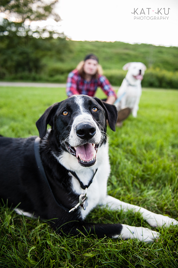 kat-ku-jake-heisenberg-detroit-dog-photos_08